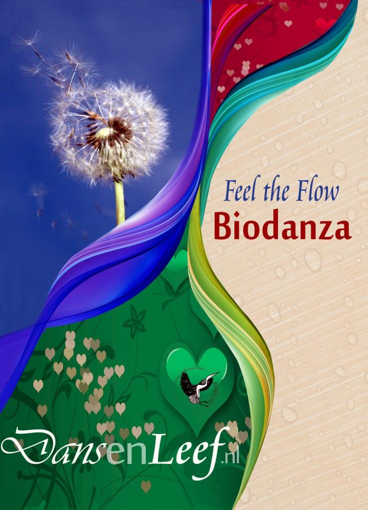 Wekelijkse Biodanza groepen