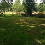 Veel dansruimte in de tuin