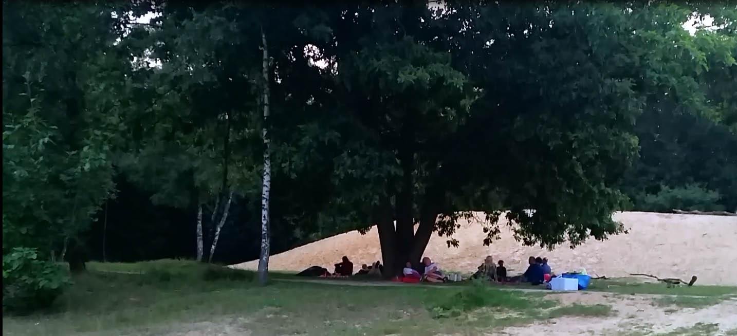 picknick van ver af